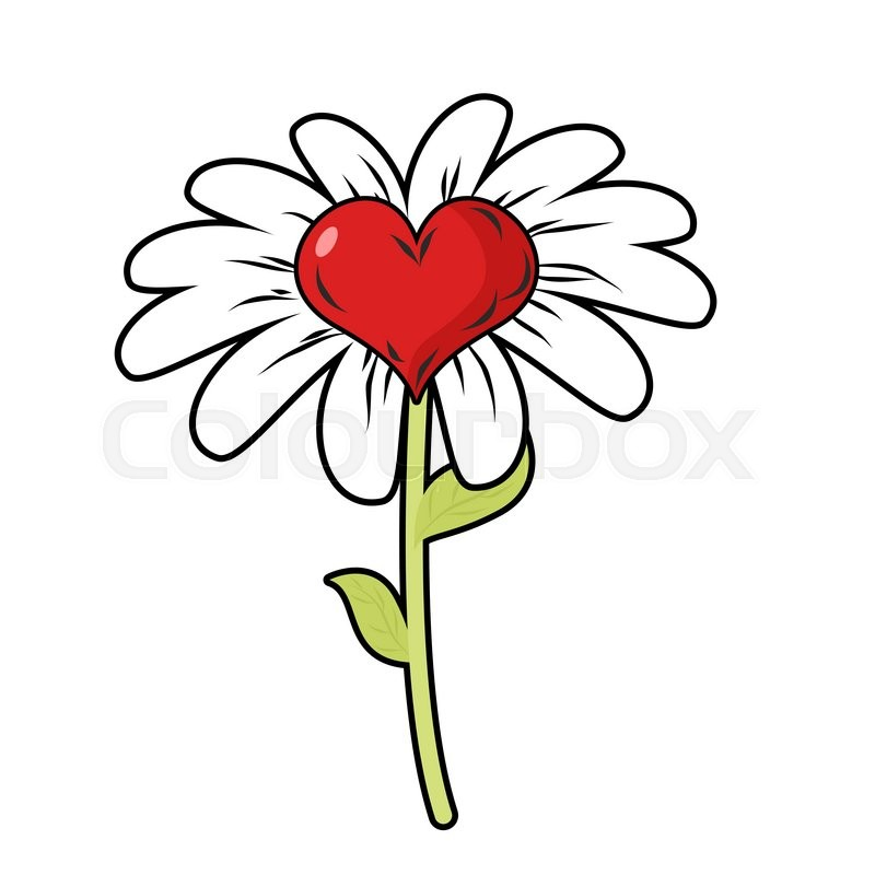 Flower Of Love Red Heart Symbol Of Love And Daisy Petals Fantastic