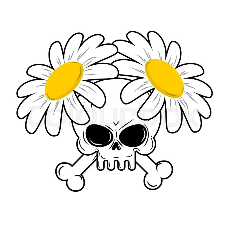 Skull and flowers bones in camomiles death and lovely white skull and flowers bones in camomiles death and lovely white flowers head skeleton character death flower is symbol of life vector mightylinksfo