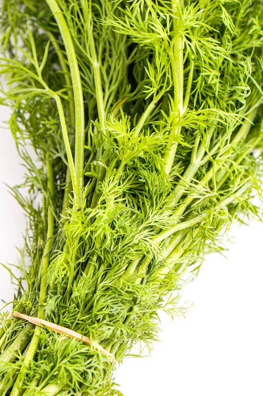 Stock image of 'Fresh Organic green Healthy Dill Bunch, Isolated on white'