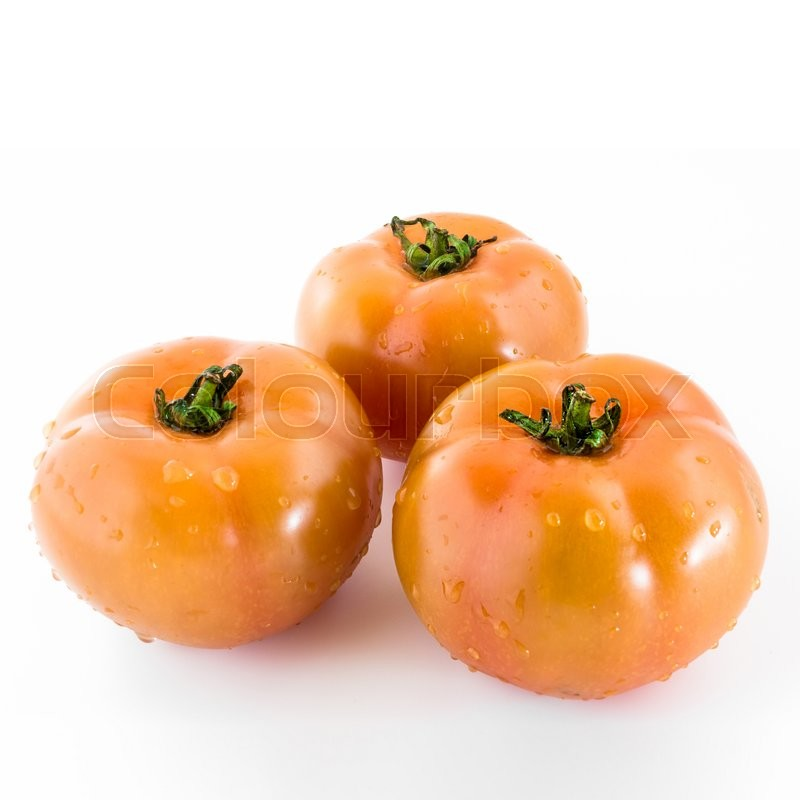 Stock image of 'Three tomatoes covered with drops of clear water, after a thorough cleaning.'