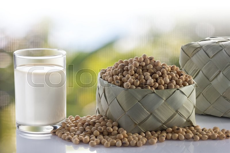 Stock image of 'Glass of soy milk and soy bean in garden.'