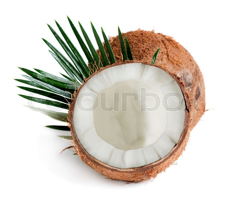 Stock image of 'Coconut with palm leaves isolated on white background'