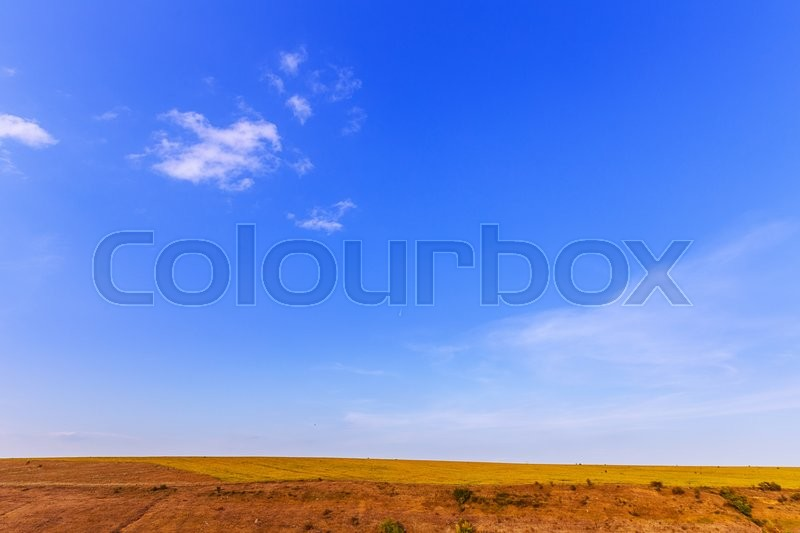 Stock image of 'field of dry grass landscape sky'