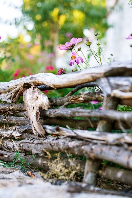 Stock image of 'retro wooden fence landscape flowers'