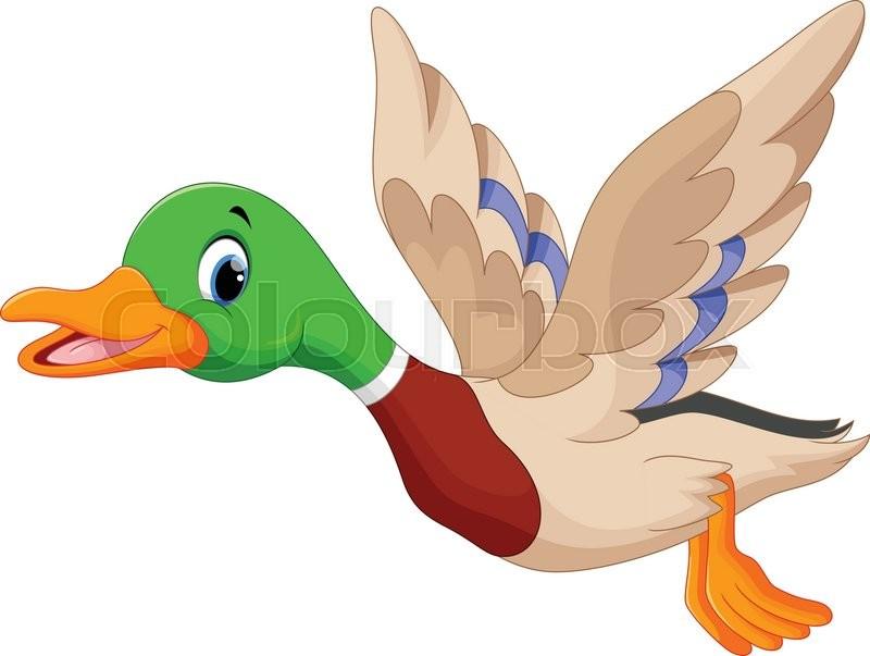Vector illustration of cartoon flying duck | Stock Vector ...