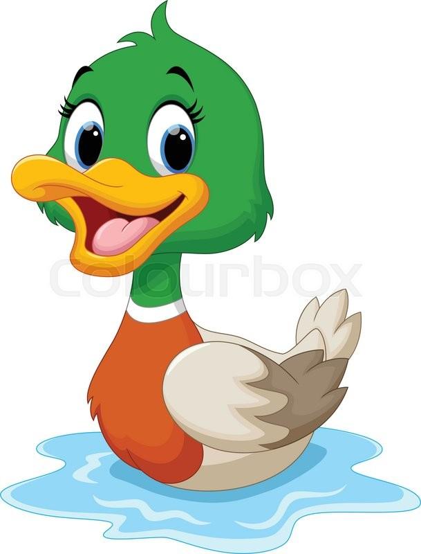 Vector illustration of cartoon duck swimmin | Stock Vector ...