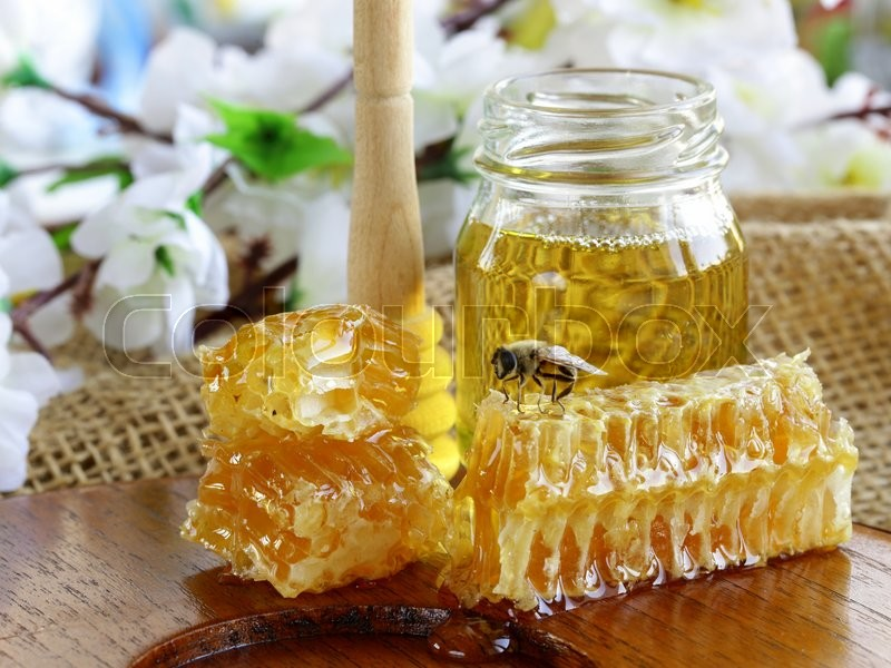 Stock image of 'macro shot of honey bee on a honeycomb (natural product)'