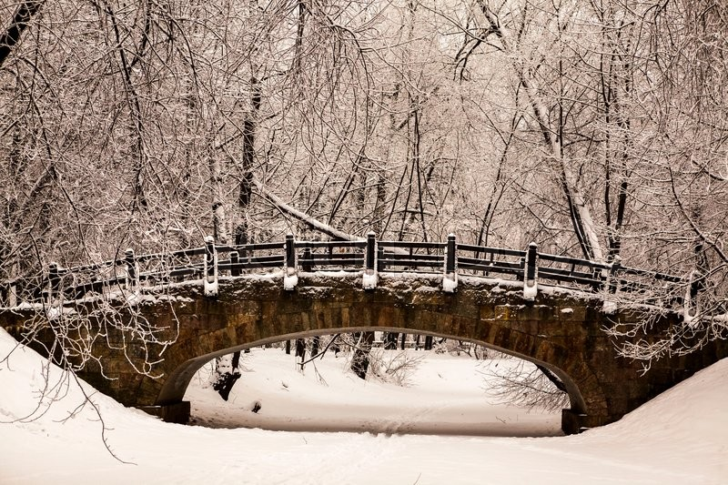 Stock image of 'Beautiful old stone bridge of  winter forest in the snow at sunset frosty days. Trees covered in frost and snow.'
