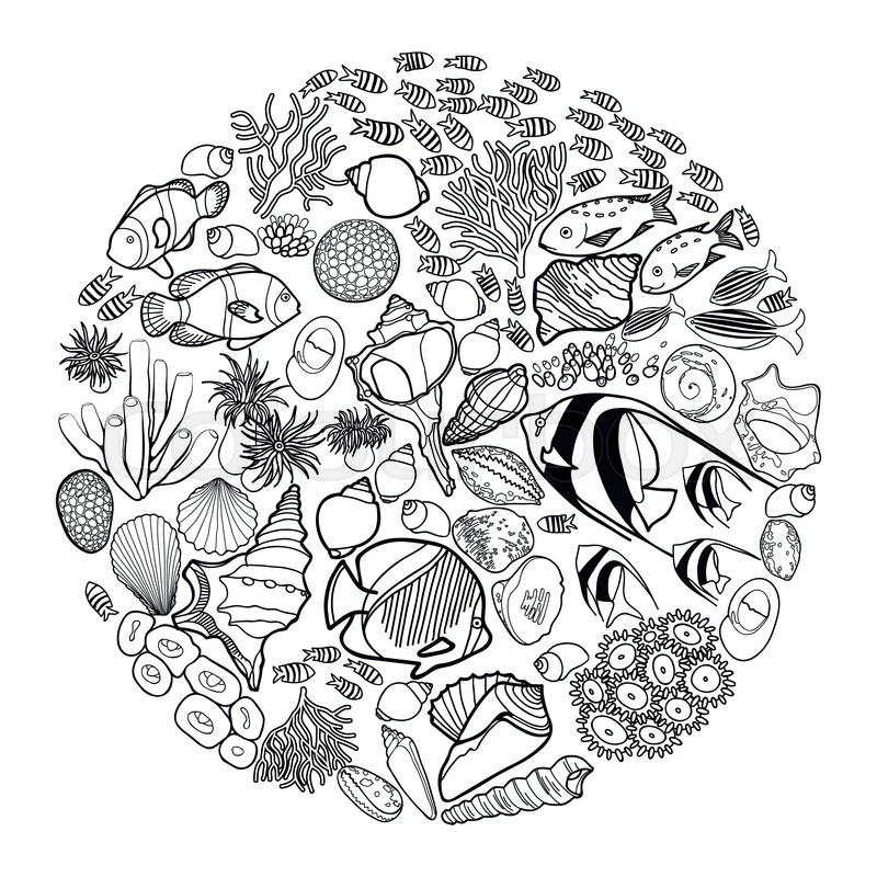 Fish Seashells Seaweed And Corals Drawn In Line Art Style On White Background Coloring Book Page Design