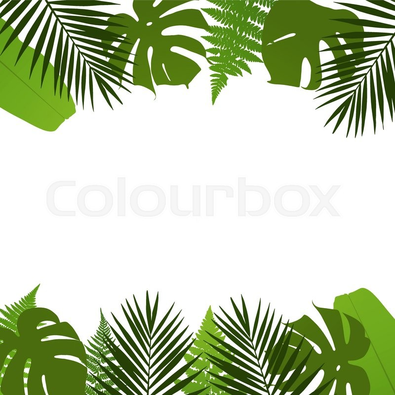 tropical leaves background with palm fern monstera and summer beach background clipart summer beach background clipart