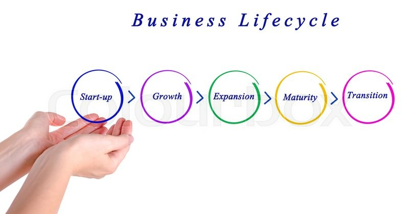 Stock image of 'Business lifecycle'