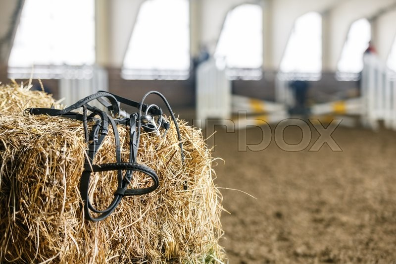 Stock image of 'Horse equipment lying on a fresh bricks of hay on a manege'