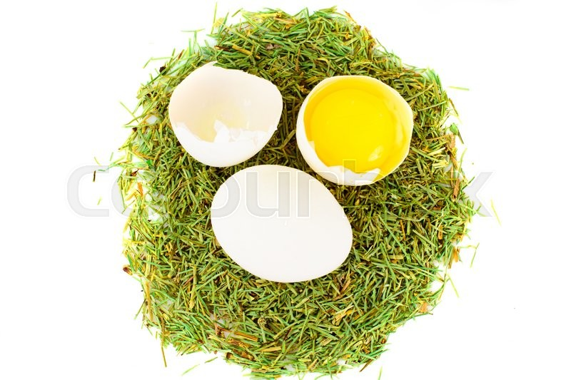 Stock image of 'Egg on Grass Studio Photo on Easter Theme'