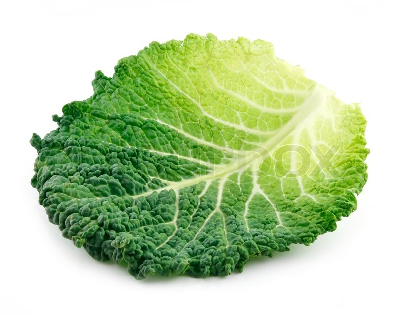Leaf Of Ripe Savoy Cabbage Isolated On Stock Image Colourbox