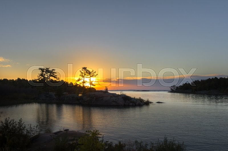 Stock image of 'Sun Rising Over Pine Tree'