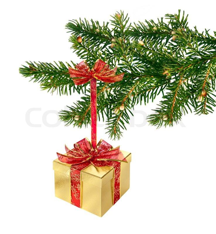 gold und rot geschenkbox h ngen gr ne weihnachten ast. Black Bedroom Furniture Sets. Home Design Ideas