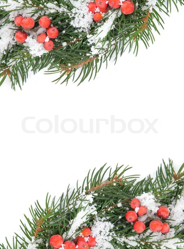 weihnachten rahmen mit schnee und holly berry isoliert auf. Black Bedroom Furniture Sets. Home Design Ideas