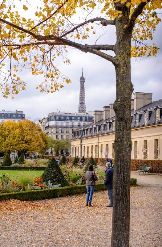 Editorial image of 'View of the Eiffel Tower for the autumn branches , located in front of the War Museum at Les Invalides in Paris esplanade .'