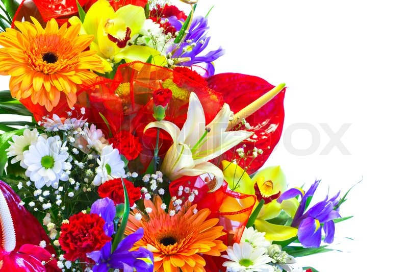 Bright Summer Flower Bouquet isolated on white | Stock Photo | Colourbox