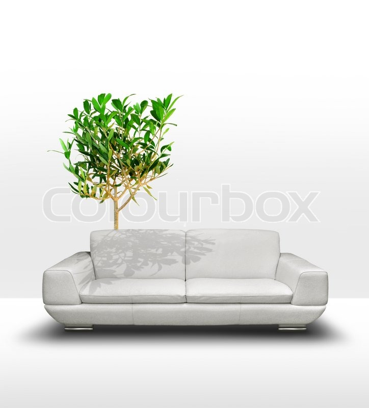 Pleasing White Leather Sofa With Green Tree In Stock Image Machost Co Dining Chair Design Ideas Machostcouk