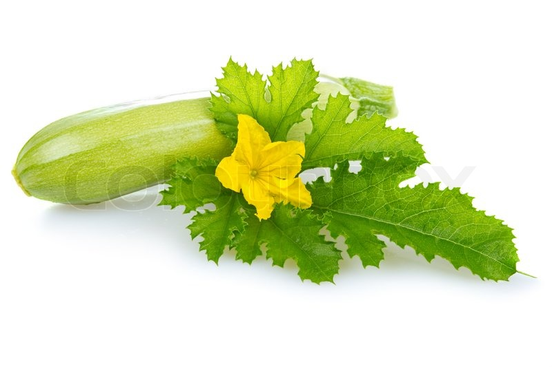 Ripe marrow vegetable with leaf isolated on a white background ...