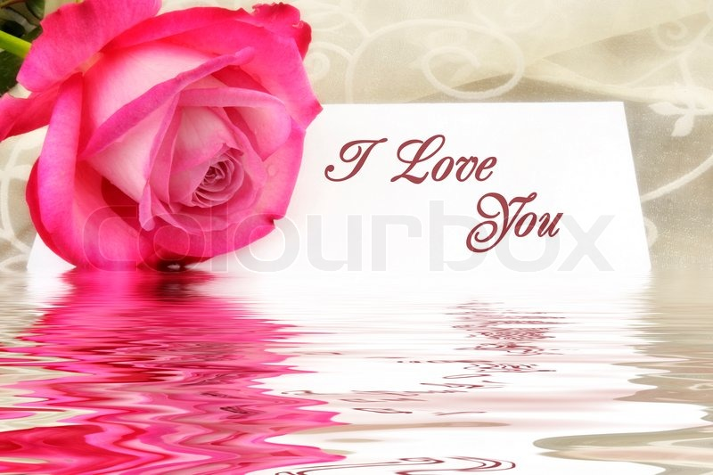 Stock image of 'Pink Rose in front of a I love you massage'