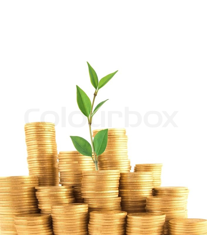 Finance Background: Coins And Green Plant Isolated On White Background