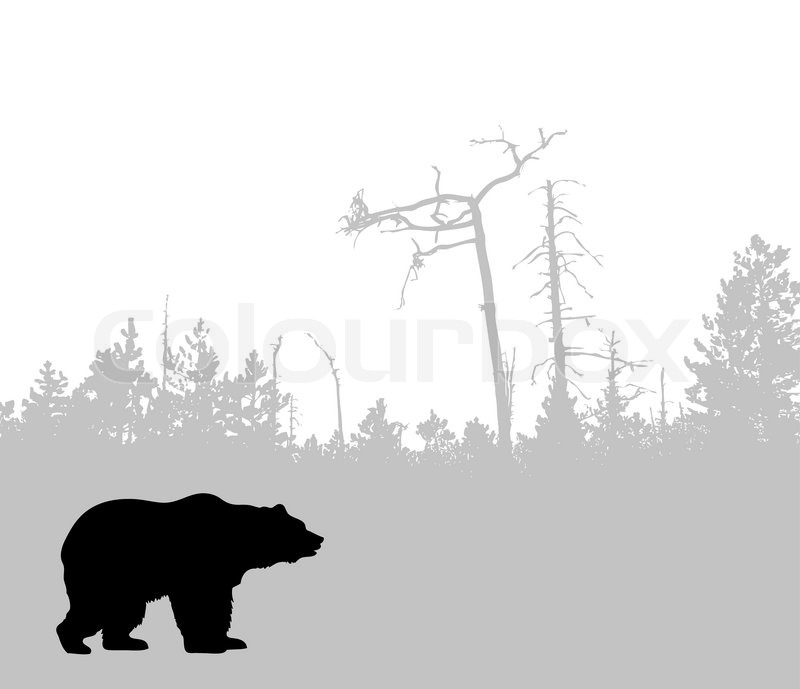 Pin Brown Bear Silhouette on Pinterest