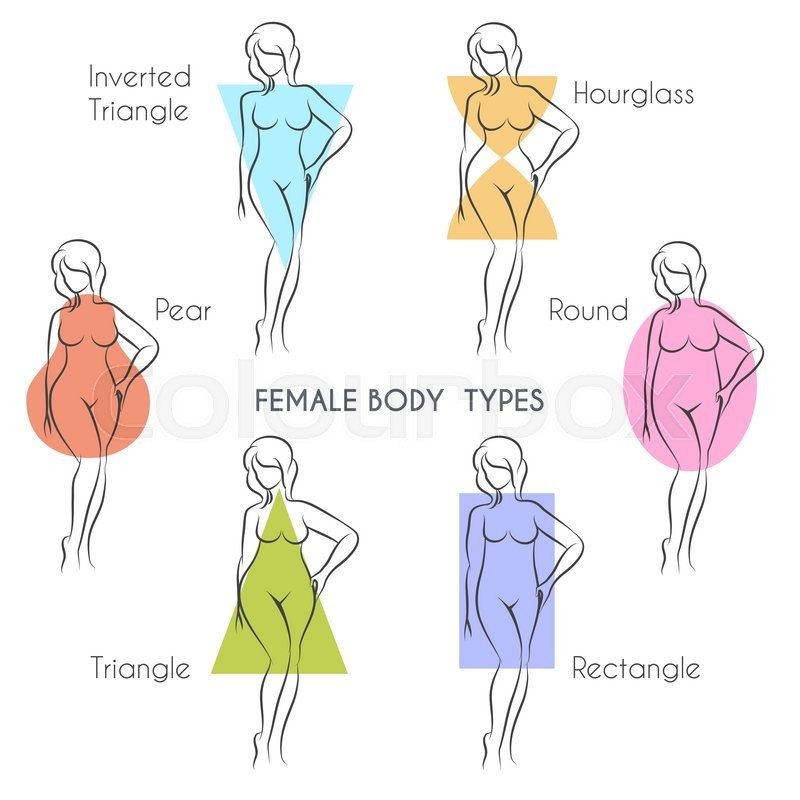 Female Body Types Anatomy Main Woman Figure Shape Free Font Used