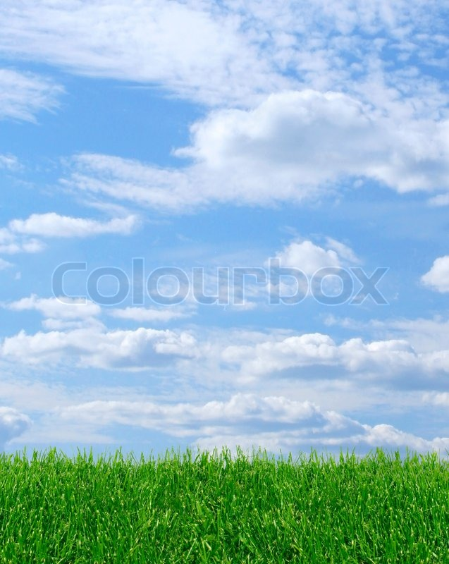 Sky Clouds Background Vertical