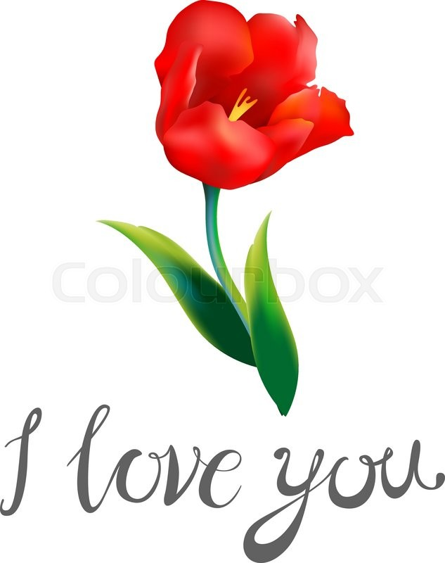 I love you watercolor blue word with red hearts on a white i love you watercolor blue word with red hearts on a white background bouquet of red and yellow flowers greeting card for valentine39s day watercolor mightylinksfo