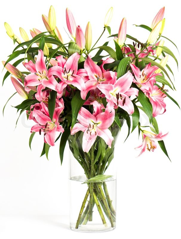 Pink lily flowers bouquet isolated on white background | Stock Photo ...