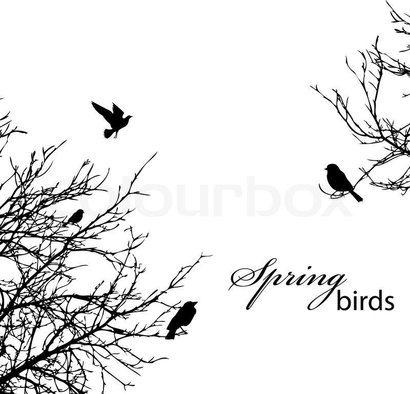 Stock vektor af silhuet af træer og fugle copyspace
