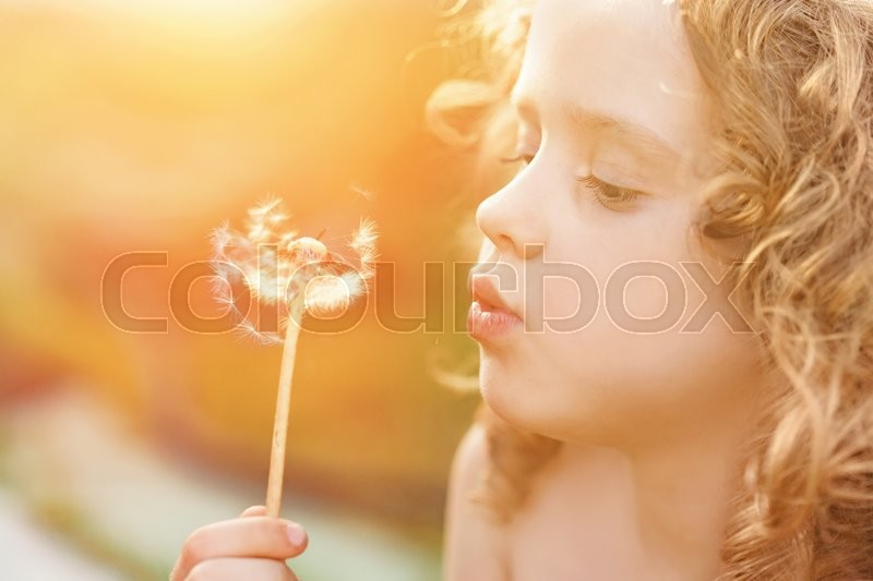 Close up portrait the little curly girl blowing dandelion, toning instagram filter, stock photo
