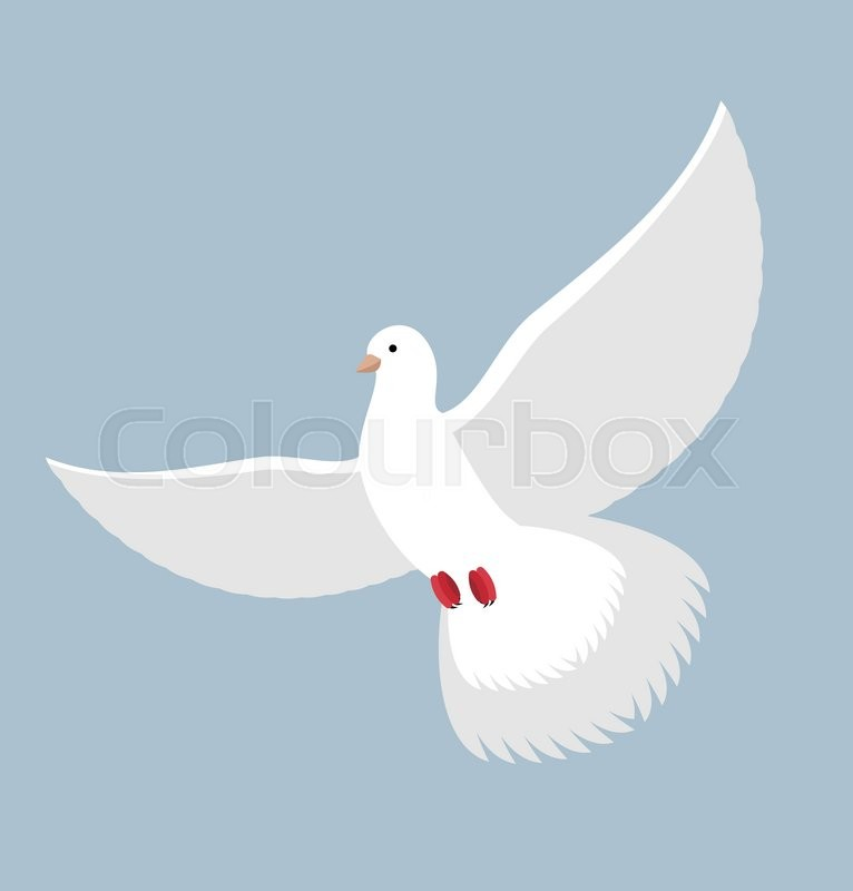 White Dove Flying White Pigeon Bird With Wings White Blue Symbol