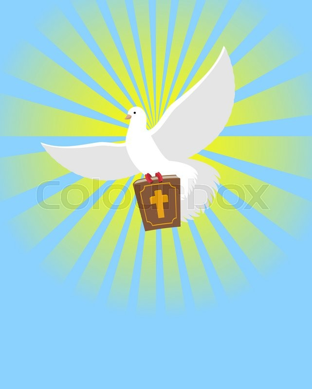 Dove And Bible Holy Bible In Its Paws White Pigeon Background Of