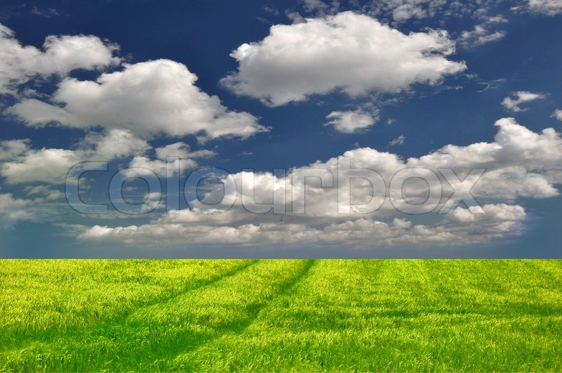 Nature background grass sky free stock photos download (35,718 ...