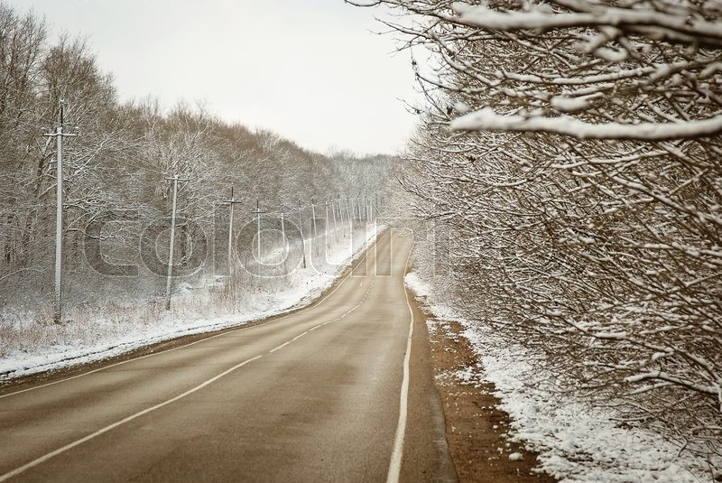 Winter trees on snow in hazy park with long white road, stock photo