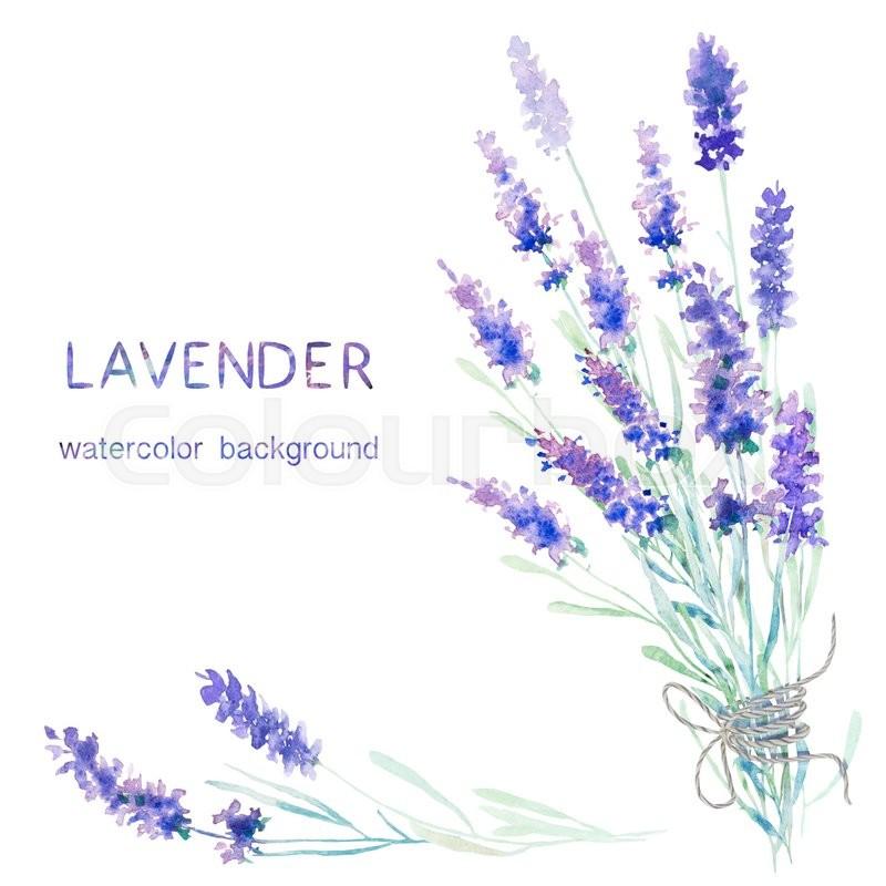 Lavender Background Wedding: Watercolor Lavender Background. Card, Greeting Cards
