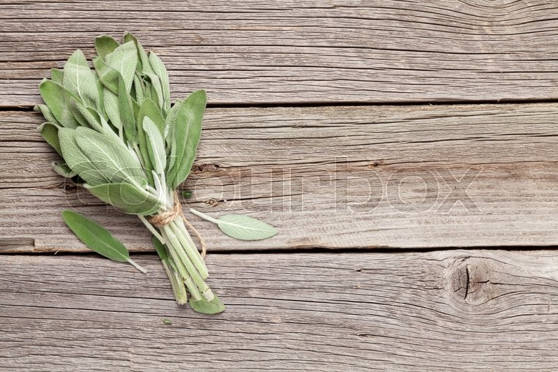 Bunch of garden sage herb on wooden table. Top view with copy space, stock photo