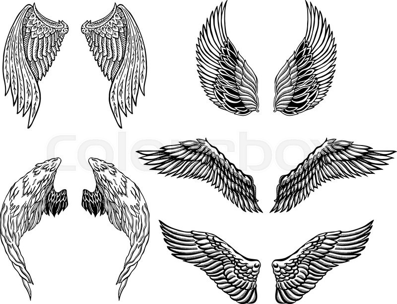Heraldic Wings Set For Tattoo Or Stock Vector Colourbox