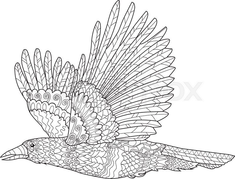 Flying raven with high details adult anti stress coloring for Raven coloring pages