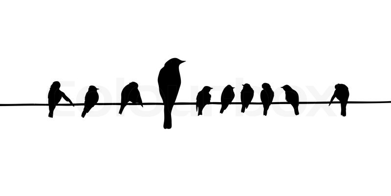 Vector silhouettes of the birds on wire | Stock Vector | Colourbox