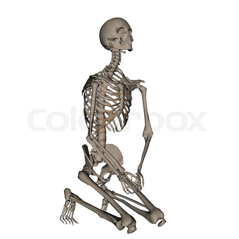human skeleton praying on his knees isolated in white background