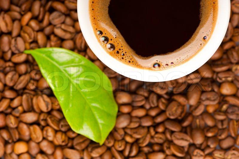Kaffe tynn grønne kaffebønner tabletter