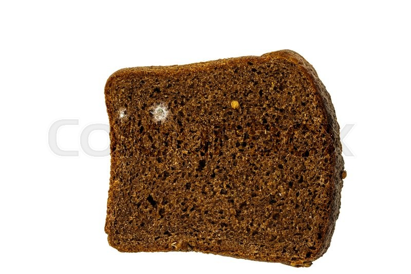 which grows mold faster moist or dry bread Where does mold grow the building science what temperature does mold grow best in does faster in the which grows mold faster moist or dry bread.