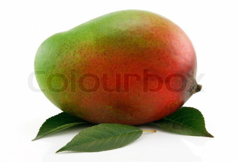moden mango