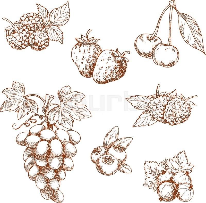 raspberry and white wallpaper - photo #49
