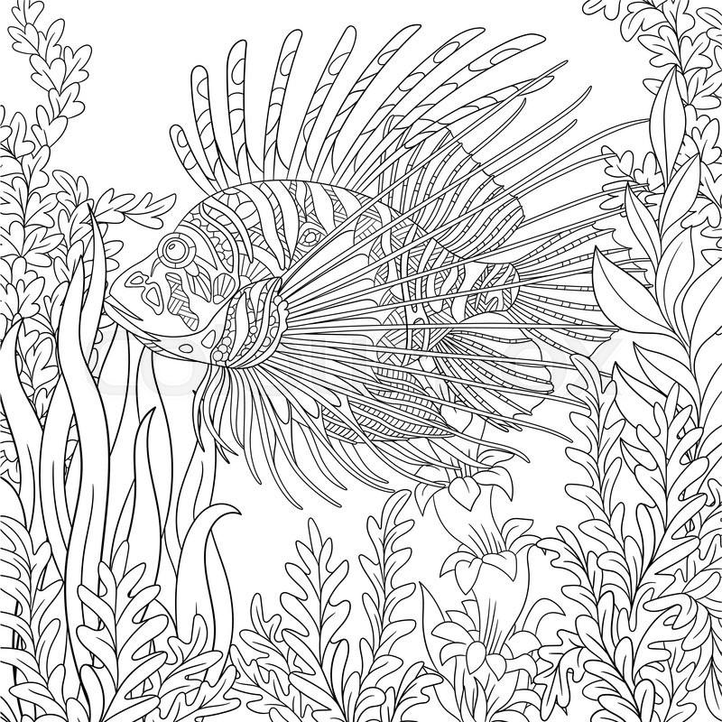 Zentangle Stylized Cartoon Zebrafish Lionfishpterois