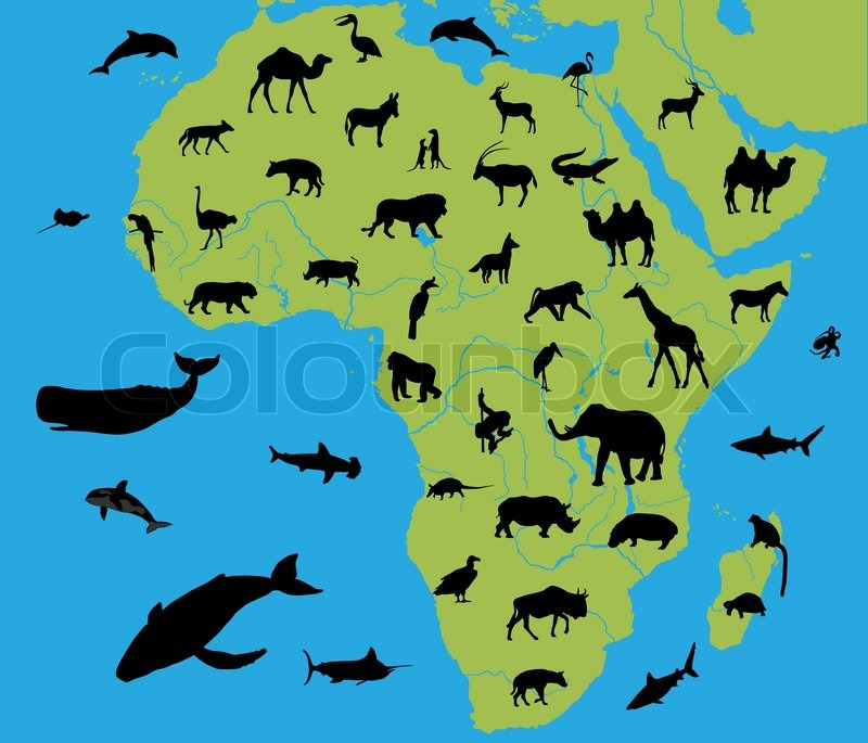 Animals on the map of Africa and their  | Stock vector | Colourbox